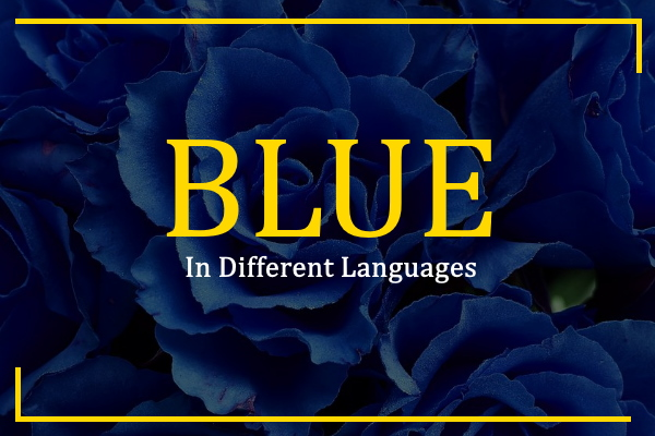 blue-in-different-languages