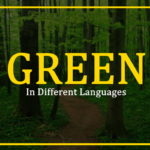 green-night-in-different-languages