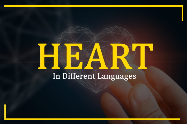 heart-in-different-languages