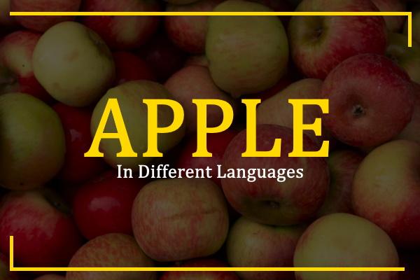 apple-in-different-languages