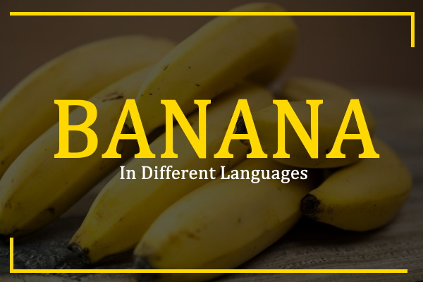 banana-in-different-languages