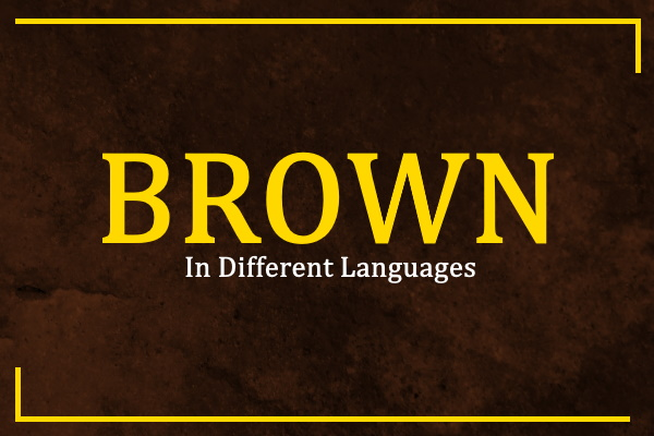 brown-in-different-languages