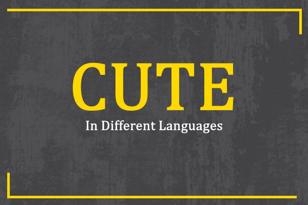 Photo of How to Say Cute in Different Languages