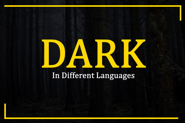 Photo of How to Say Darkness in Different Languages