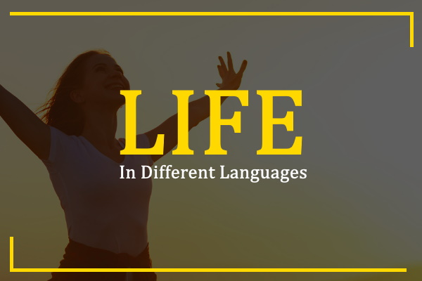 life-in-different-languages