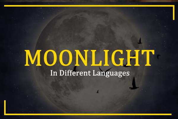 moonlight-in-different-languages