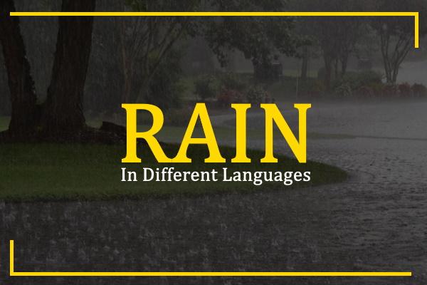 rain-in-different-languages