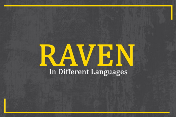 raven-in-different-languages