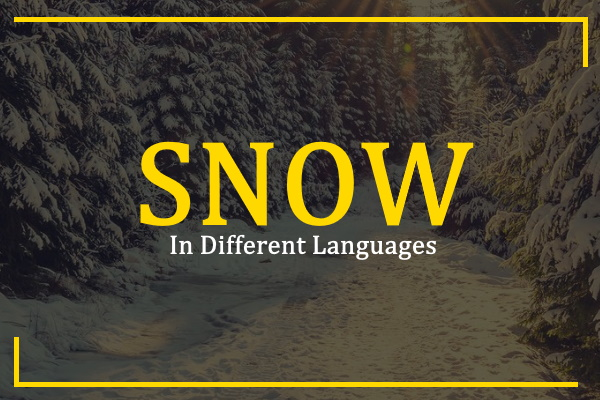 snow-in-different-languages
