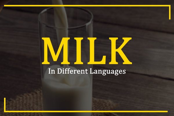 milk-in-different-languages