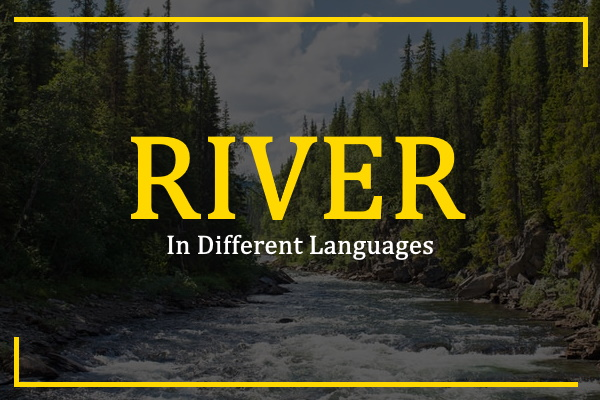 Photo of How to Say River in Different Languages
