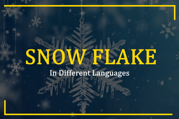 Photo of How to Say Snowflake in Different Languages