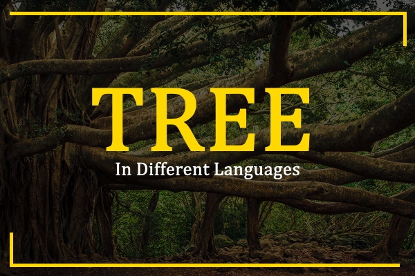 tree-in-different-languages
