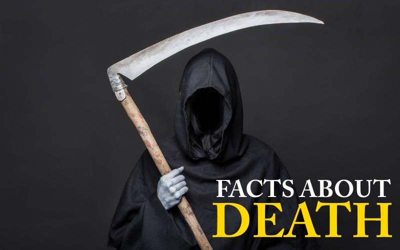 facts-about-death