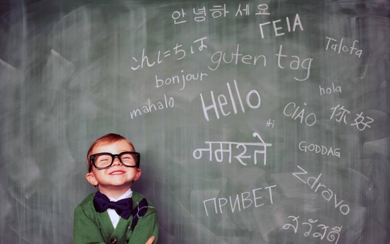 ways-of-learning-language-arts-through-literature